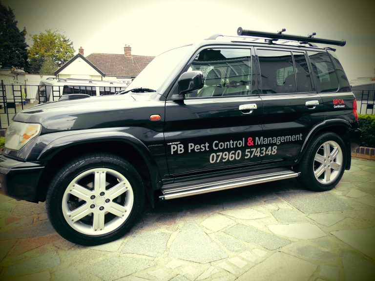 DSCI0530 Car adj 768x576 - PB Pest Control & Management, Romford and the surrounding areas
